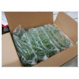 Sunnyland Frozen Green Bean Cut 5 - 10 cm (5 x 2kg) - China